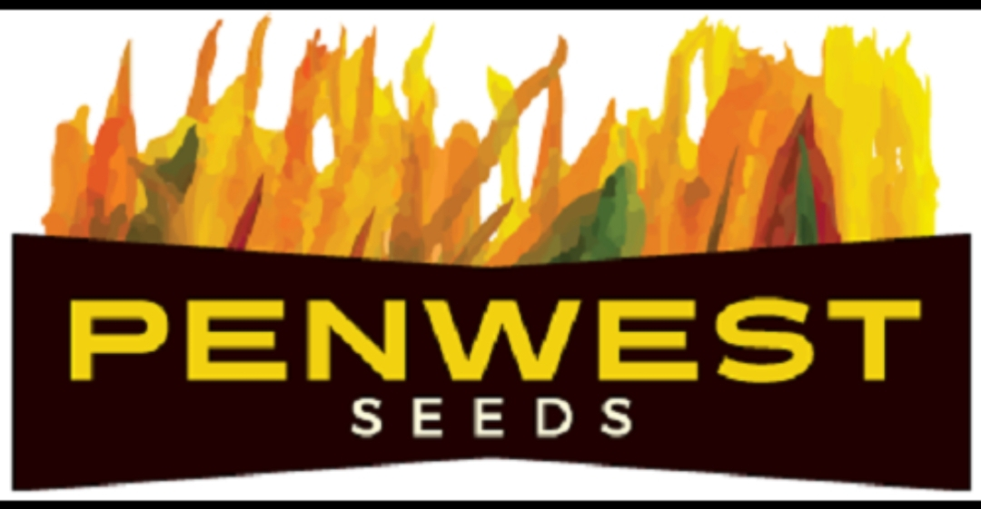 PENWEST SEEDS – Seed Available Now  2019/20